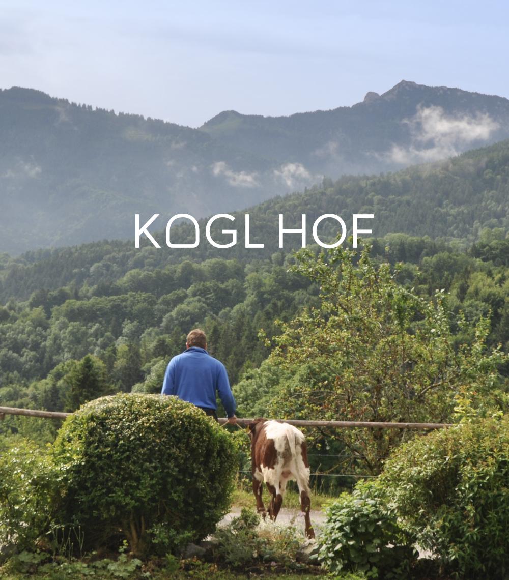 grijn_Kogl_Aussicht